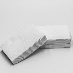 "HW 8.5"" X 6.5"" 白色抽纸 - 5500/箱"